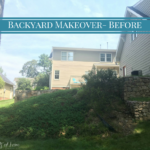 Backyard Makeover- The Before