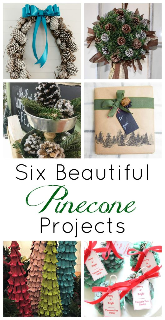 create-with-me-pinecone-projects
